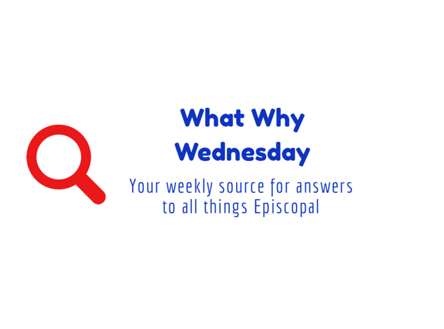 Introducing-What Why Wednesdays